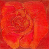 Bettina Engelke-Vogelsang - Rose rot-orange