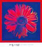 Andy Warhol - Daisy, c. 1982 (blue and red)