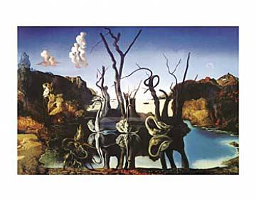 Swans reflecting elefants of artist Salvador Dalí, Swans, Mirror, Reflecting