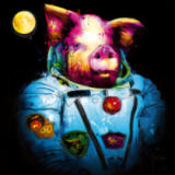 Patrice Murciano - Pig in Space