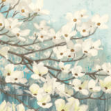 James Wiens - Dogwood Blossoms II