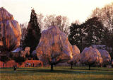 Christo und Jeanne-Claude - Wrapped Trees 35