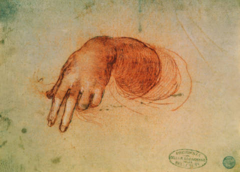 Study of a hand of artist Leonardo da Vinci, Arm, C16th, C15th, Studies, Anatomy, Drawings, Anatomical, Renaissance