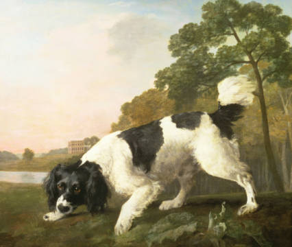 A Spaniel in a Landscape, 1771 of artist George Townley Stubbs as framed image
