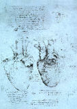 Leonardo da Vinci - The Heart, facsimile of the Windsor book