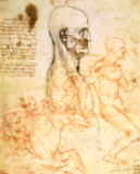 Leonardo da Vinci - Anatomical studies, c.1500-07