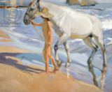 Joaquin Sorolla y Bastida - Washing the Horse, 1909