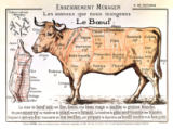 French School - Beef: diagram depicting the different cuts of meat