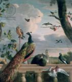 Melchior de Hondecoeter - Palace of Amsterdam with Exotic Birds