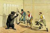 Henry Thomas Alken - 'Bear Baiting', pub. by Thomas McLean, 1820,