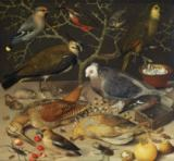 Georg Flegel - Still Life of Birds and Insects, 1637