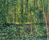 Vincent van Gogh - Trees and Undergrowth, 1887