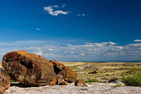 Petrified Forest National Park, Arizona, USA of artist Andreas Geh (F1 Online) as framed image