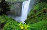 First Light (F1 Online) - Skogafoss Waterfall, Skandinavien, Island