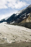 All Canada Photos (F1 Online) - Columbia icefields, Icefields, Icefield