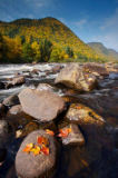 All Canada Photos (F1 Online) - Riviere Jacques Cartier, Herbst-Bilder