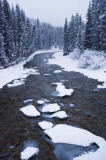 All Canada Photos (F1 Online) - Maligne-Fluss, Scott Dimond