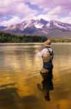All Canada Photos (F1 Online) - Dennis Lake, Steelhead