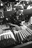 All Canada Photos (F1 Online) - Pantages Cigar-Fabrik, Cuban, Grayscale, African-Abstieg, Cuba