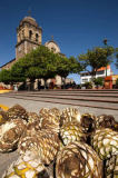 First Light (F1 Online) - Town of Tequila, Jalisco, Mexico