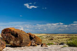 Andreas Geh (F1 Online) - Petrified Forest National Park, Arizona, USA