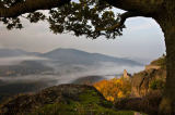 Andreas Geh (F1 Online) - View over the Rhine Valley with Hohenbaden Castle, Baden-Baden, Germany