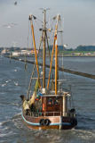 Norbert Hohn  (F1 Online) - Fishing boat returning to Langeoog, Germany