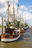 Norbert Hohn  (F1 Online) - Shrimp boats in the harbor of Dorum, Germany