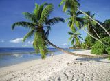 Tiofoto (F1 Online) - Chill out, Tropical vacation, Anse Source d'Argent, Digue, Traumähnlich