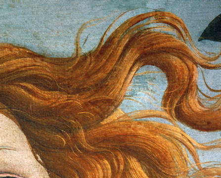 The birth of Venus of artist Sandro Botticelli, 217, 278, See, Met, Ovid, 15th, 1482, Hair