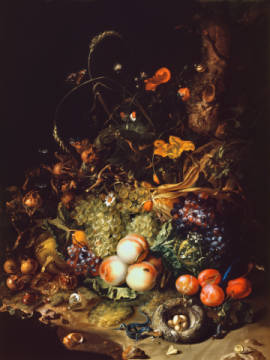 Still life with flowers, fruits and insects of artist Rachel Ruysch as framed image