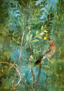 AKG Anonymous - Birds in Lemon Tree /Fresco, Villa Livia