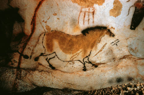 Cave Painting in Lascaux / c.15000 BC of artist AKG Anonymous, Cow, Age, Old, Cave, Wild, Early, Stone, Later
