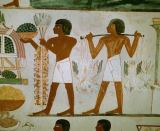Wandmalerei - Men Carrying Food /Egypt.Paint./ 18.Dyn.