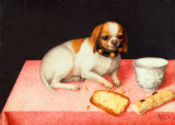 Giovanna Garzoni - Little dog with scraps of bread