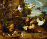 Melchior de Hondecoeter - The hawk in the chicken yard. Canvas. In