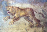 AKG Anonymous - Pompeii / Fronto house / Lion / Fresco