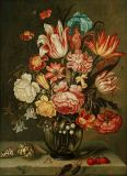 Abraham Bosschaert - Bouquet of Flowers in Glass Vase with Shells