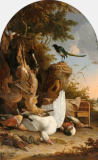Melchior de Hondecoeter - The Contemplative Magpie