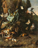 Melchior de Hondecoeter - Animals and Plants
