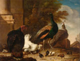 Melchior de Hondecoeter - A Hen with Peacocks and a Turkey