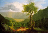 Thomas Cole - View in the White Mountains
