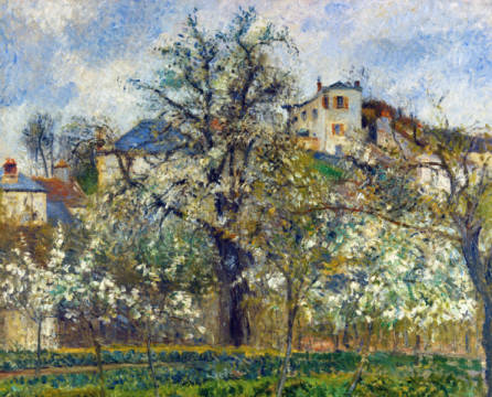 Vegetable garden and trees in bloom, spring, Pontoise of artist Camille Pissarro as framed image