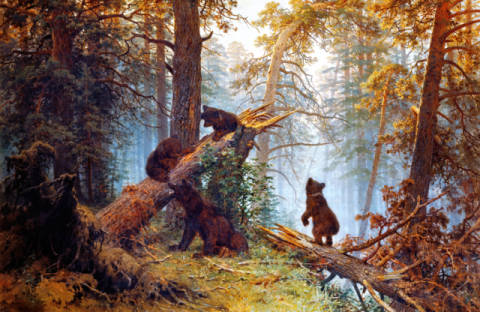 Morgen in einem Kiefernwald of artist Iwan Iwanowitsch Schischkin, 139, 213, Bear, 19th, 1889, Pine, Iwan, Animal