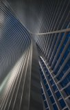 Jef Van den Houte - Calatrava lines at the blue hour