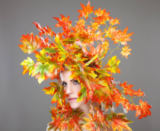 Tomas Anderson - Beautiful young woman wrapped in leafs