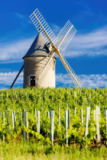 Richard Semik - Vineyards with windmill near Chénas, Beaujolais, Burgundy, France