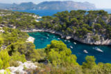Borges Samuel - Calanques of Port Pin in Cassis
